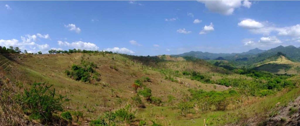EXPANDING THE GREEN COVER.  Part of the 50-hectare land in Sitio Kanawan, Morong, Bataan where 10,000 seedlings of hardwood and fast growing fruit trees will be planted as part of PTT's Gas Up for a Tree project.