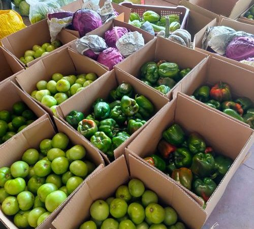 The reasons why Igorots in NCR directly source goods from farmers